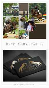 Classy Jumping Horse Silhouette Logo Brings Brand Name to Center Stage