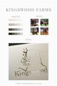 Sophisticated Color Palette Paired With Charismatic Arabian Show Horse Logo