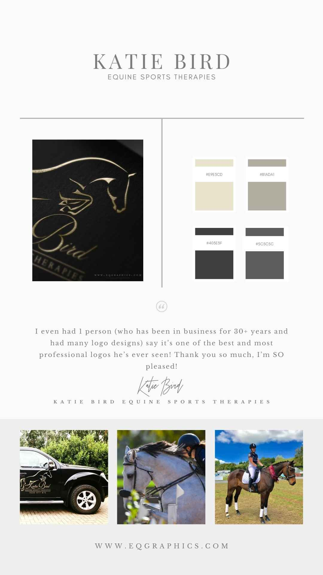 Professional Brand Identity Elevated With Equine Sports Therapist's Custom Logo