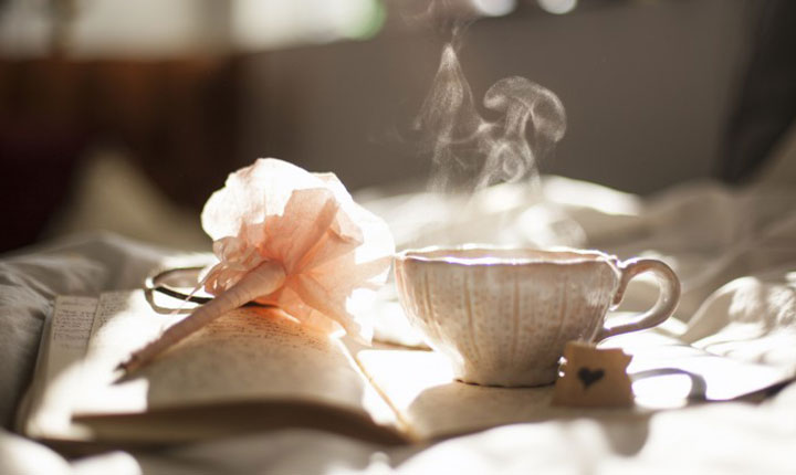 A nice cup of tea, a flower and a book in the morning sun beautifully summing up the feeling of NZ Feng Shui - Equate