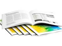 University Prospectus Design