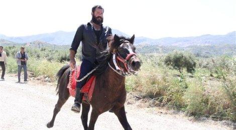 The Cretan horse breed