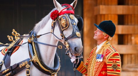 """""""The Queen and Her Ceremonial Horses"""" - Documentary"""