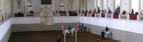 The Spanish Riding School of Vienna