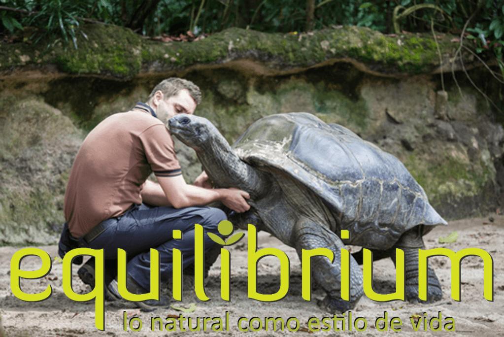 Tortugas Gigantes de las Islas Galapagos