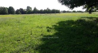 Normandy-Falaise area-Property