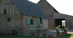 Normandy – Gacé area – Stud farm