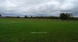Normandie – Région Vimoutiers – Haras d'élevage