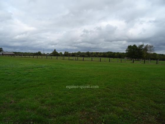 Normandy – Vimoutiers area – Studfarm