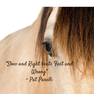 Slow & Right Reconditioning Your Horse