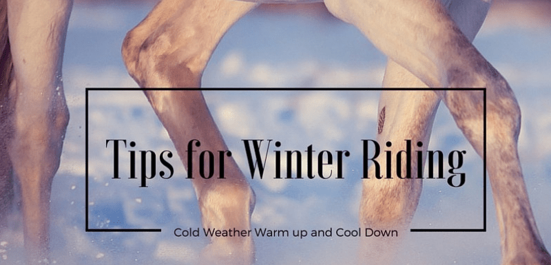 Tips for Winter Horse Riding