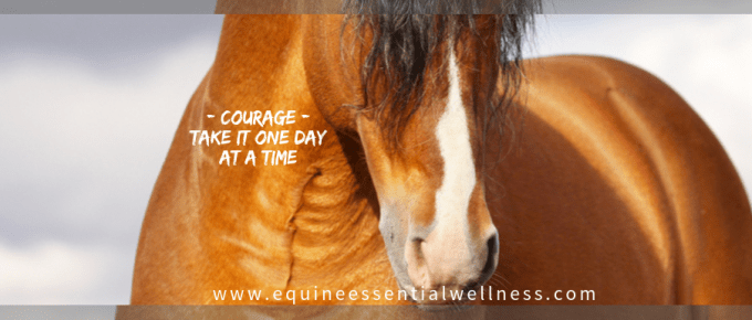 Courage - take it one day at a time