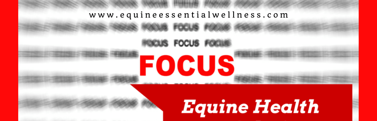 Equine Health Solutions