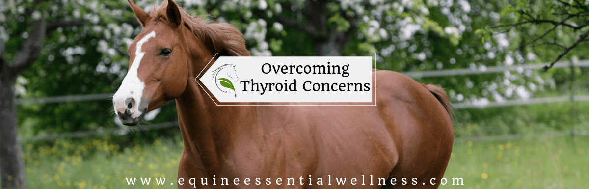 Getting in front of thyroid dysfunction