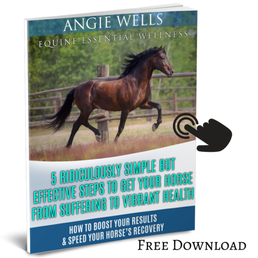 My horse is coughing... start with these 5 steps.