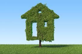 Mise au vert : La bioclimatique et écoconstruction (rediffusion)
