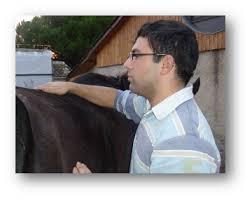 Homme avec un cheval