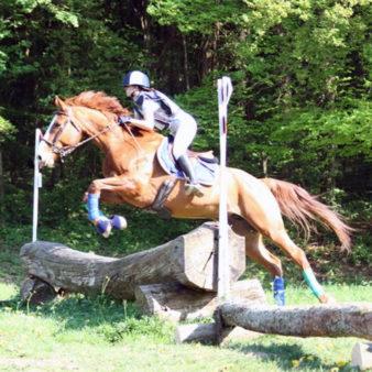 CCE - Équitation Passion