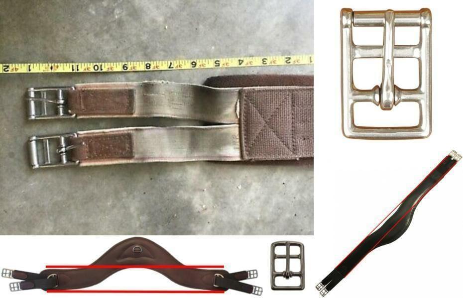 Girths, buckles, elastic, saddle fit