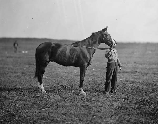 Old Baldy General Meade Civil War