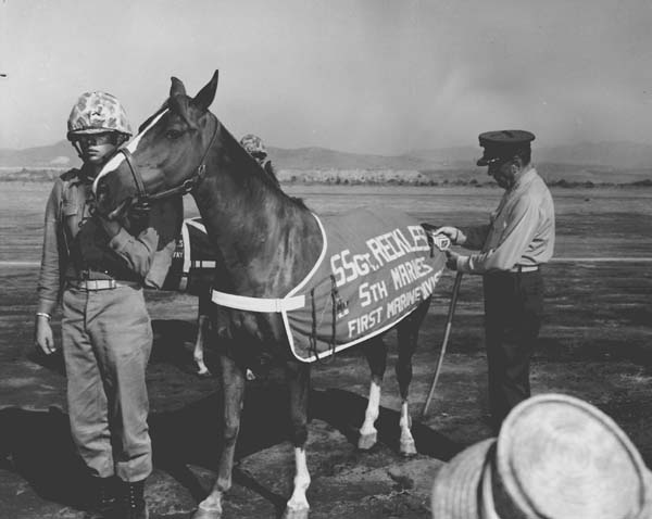 Staff Sergeant Reckless War Hero