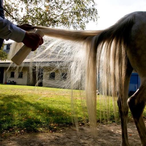 Demelant-naturel-chevaux-soin-naturel-crins-cheval-aux-huiles-essentielles-bio- (Equiwiki Boutique équitation) 1x1-1000x1000 exemple application queue cheval