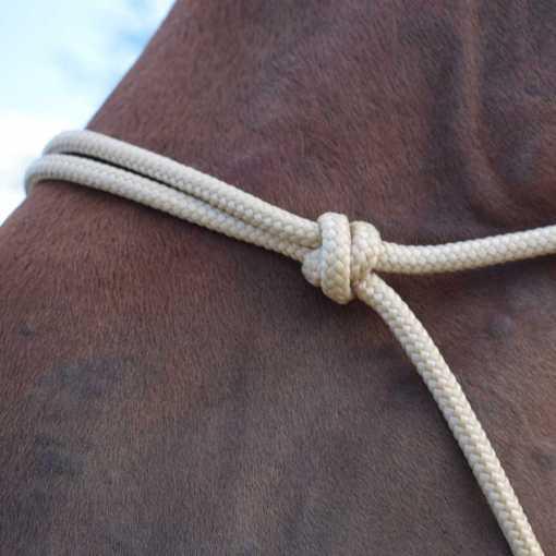 licol-ethologique-cheval-sans-tressage-Equi-étho-création (Equiwiki boutique équitation) 1x1-1000x1000ld - noeud