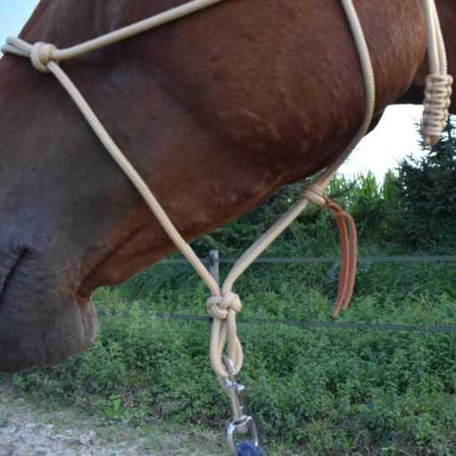 licol-ethologique-cheval-sans-tressage-Equi-étho-création (Equiwiki boutique équitation) 1x1-1000x1000ld - side