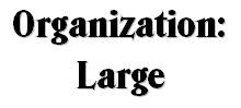 Large Organization