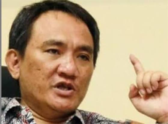 Yusril Gugat AD/ART Demokrat, Andi Arief: Mirip Pendekar Jahat Drama Radio