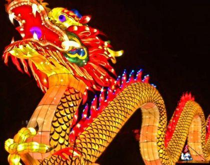 China Lights Zoo -- OFF --