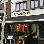 Especial: restaurantes veggies en Hasselt