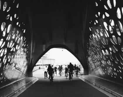 Tour arquitectónico en bici por Amberes
