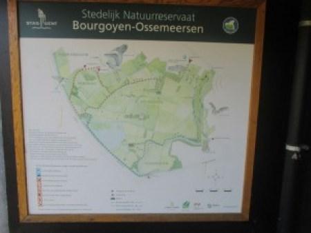IMG_2964 De Ruta Por Gante: Reserva Natural Bourgoyen-Ossemeersen - IMG 2964 300x225 - De Ruta Por Gante: Reserva Natural Bourgoyen-Ossemeersen