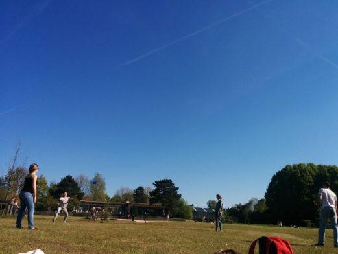 IMG_20160505_171217 Parque de Kessel-lo: un lugar para disfrutar del sol - IMG 20160505 171217 1024x768 - Parque de Kessel-lo: un lugar para disfrutar del sol