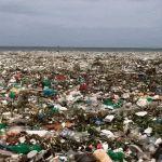 ¡SOS! El mar no come plástico