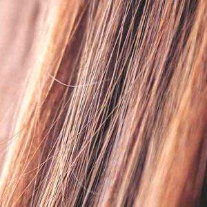 Oli per capelli