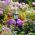 2. Wangerländer Gartenspaziergang