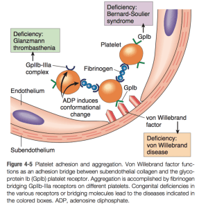 Robbins & Cotran Pathologic Basis of Disease 9E (2014)