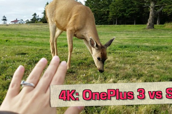 OnePlus 3 vs Galaxy S7: 4K Camera Test