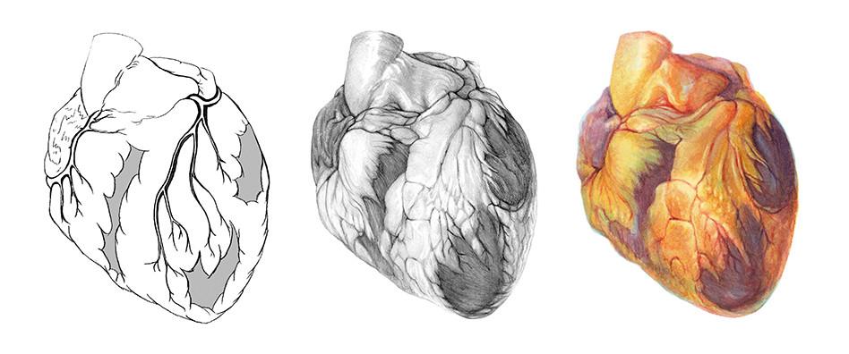 Tri Heart