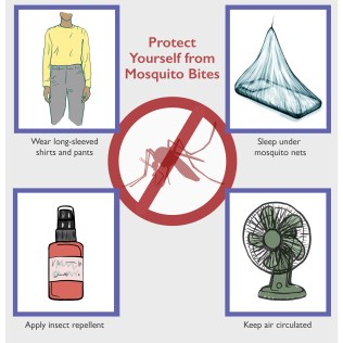 Protection from Mosquito Bites