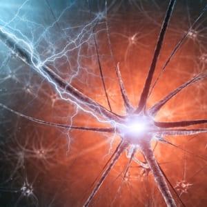 Neuron1