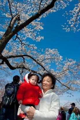 Scarlett and Grandma at Cherry Blossom Festival
