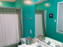 Bathroom New Paint-53