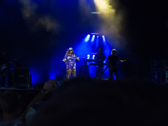 Weird Al Mandatory Fun Concert-7 - web