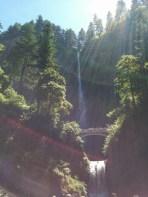 Multnomah Falls 016