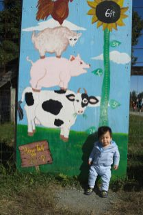 Annual Farm Height Measurement: Samuel