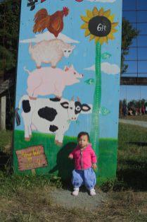 Annual Farm Height Measurement: Stella