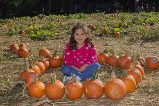 Scarlett and the Pumpkin Patch 2016